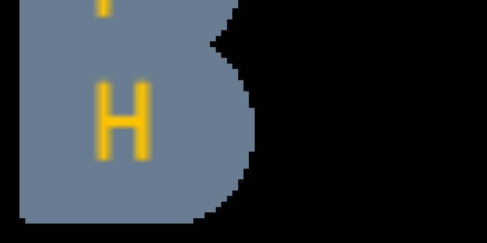 BFH_Logo_A_en_100_RGB